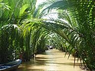 Khởi Hành Từ Hà Nội 5 Ngày 4 Đêm: Cần Thơ - Cà Mau - Bạc Liêu - Mỹ Tho - Bến Tre - Sài Gòn
